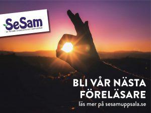 BliSeSamForelasare8