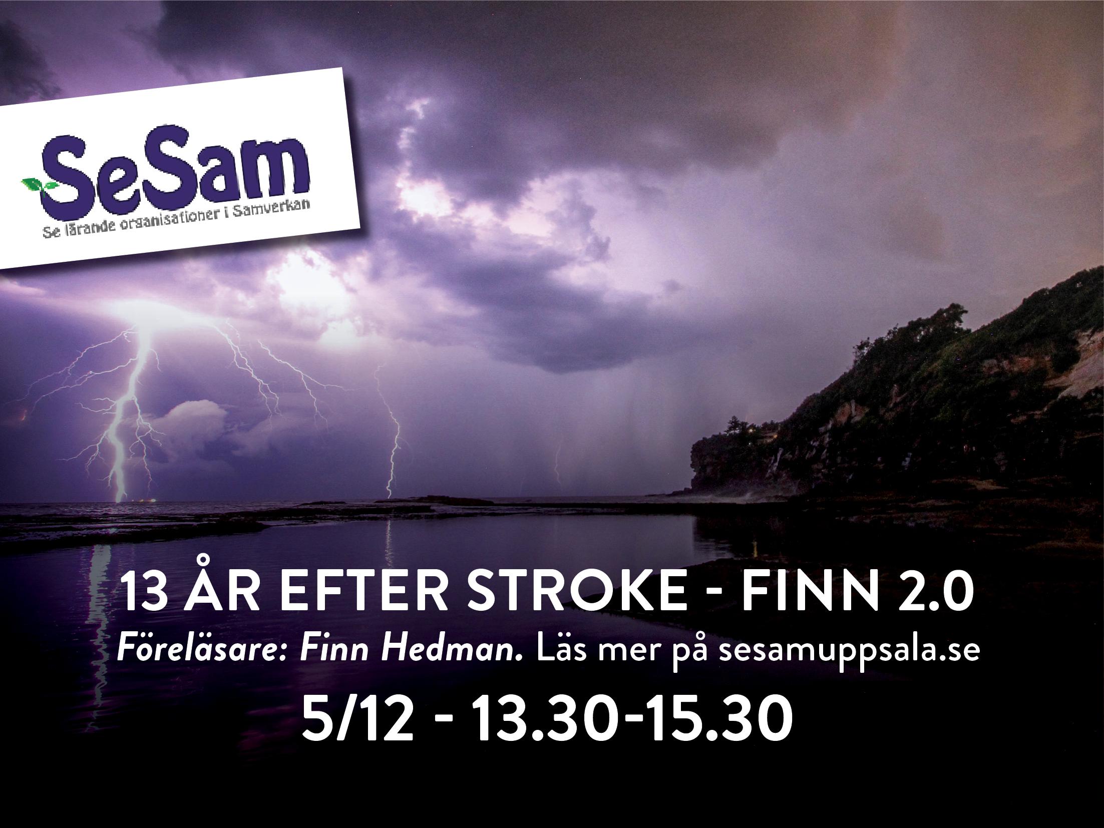 """Föreläsning 5 december – """"13 år efter stroke – Finn 2.0"""""""